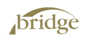 Bridge logo