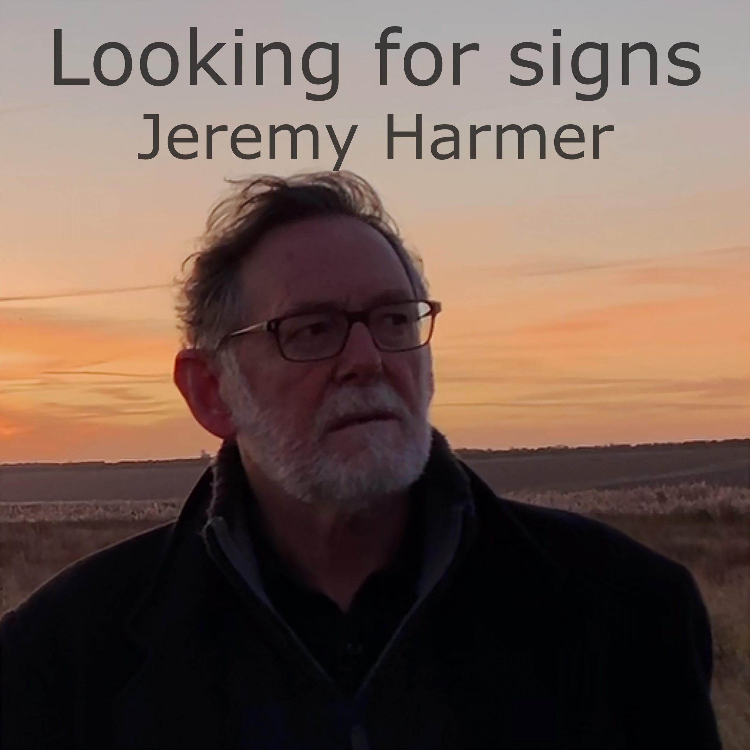 Looking for signs cover